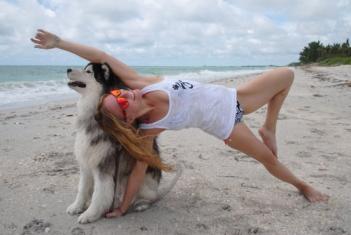 britt dienes yoga sarasota