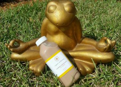 organic awakening sarasota yogi food