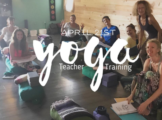 healsci yoga teacher training sarasota april 2018