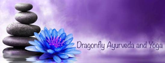 dragonfly ayurveda and yoga